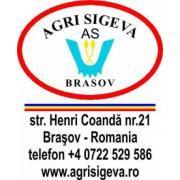 Agri Sigeva