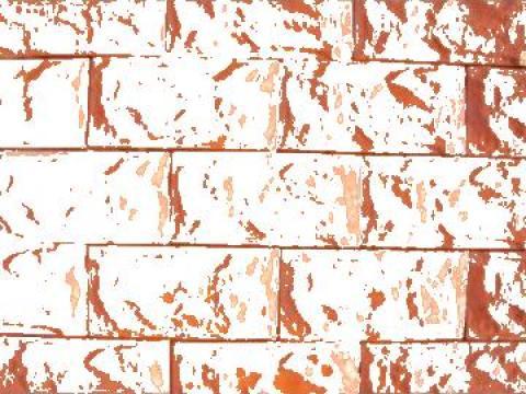Piatra de placat soclu / garduri / fatade de la Pavele Vibropresate SRL