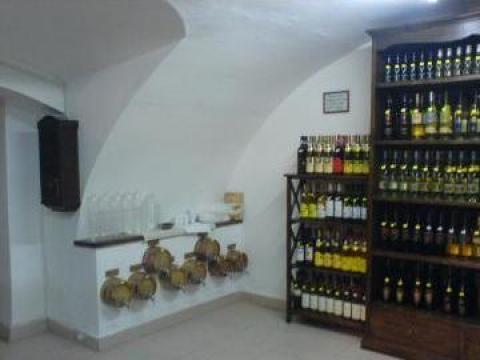 Vin vrac Recas (9 sortimente) de la Mineralia Srl