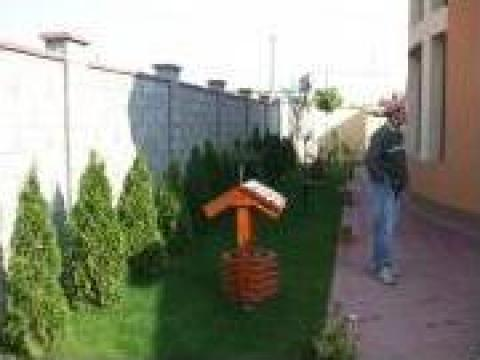 Amenajare curte cu plante si gazon de la Garden Rustic Spatii Verzi