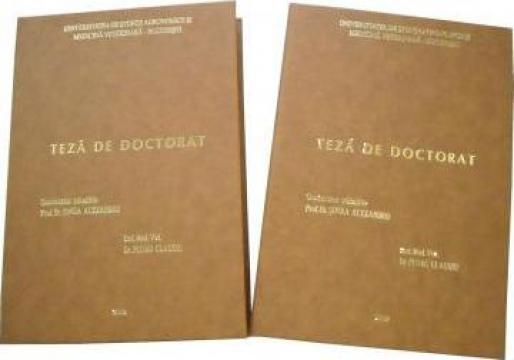 Coperti de diploma, licenta, masterat, doctorat de la Alex Media Print