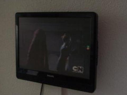 Televizor plasma Philips de la Pro New Vest Top