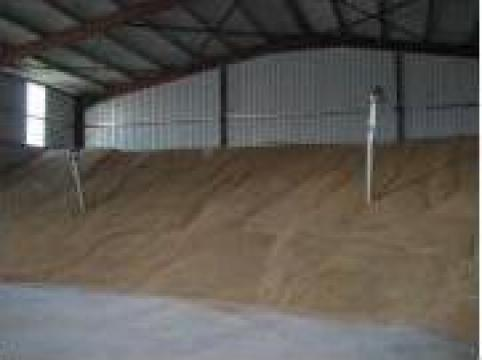 Grau panificatie 2012, 85 tone de la PFA Dorcea Florea