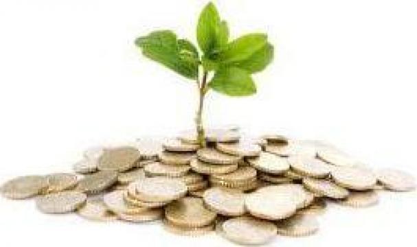 Servicii Start-Up de la Think Smart Accounting Srl