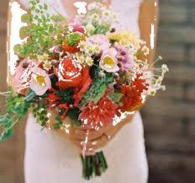 Afacere la cheie, Florarie Pitesti de la Ada Flowers&Events