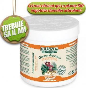 Gel antiinflamator cu Gheara dracului si plante BIO Krauter de la Life Care Bio