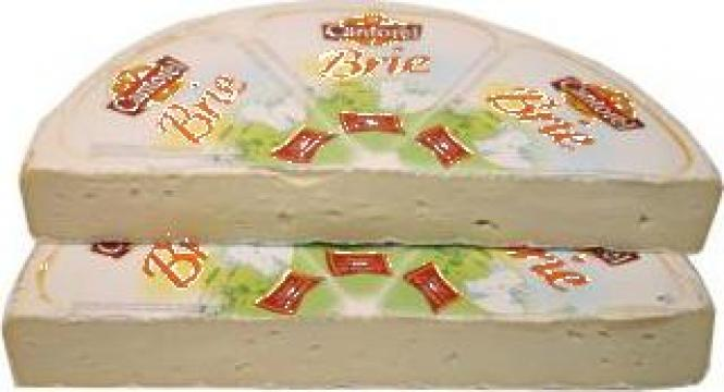 Branza Brie de la S.c. D&D Food S.r.l.