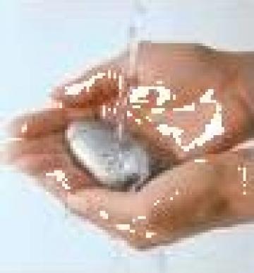 Cursnotiuni fundamentale de igiena de la Timnic Srl