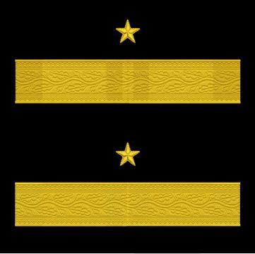 Broderie Grade maneca pentru General de Brigada MAPN