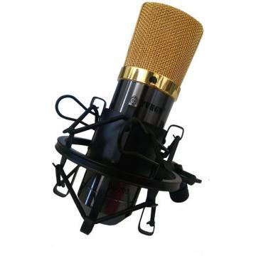 Microfon profesional pentru studio de inregistrari cu fir de la Startreduceri Exclusive Online Srl - Magazin Online - Cadour