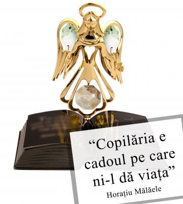 Cadou Ingeras cu cristale Swarovski de la Luxury Concepts Srl