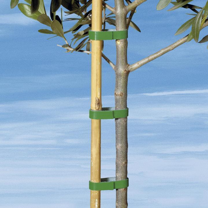 Banda adeziva pentru plante