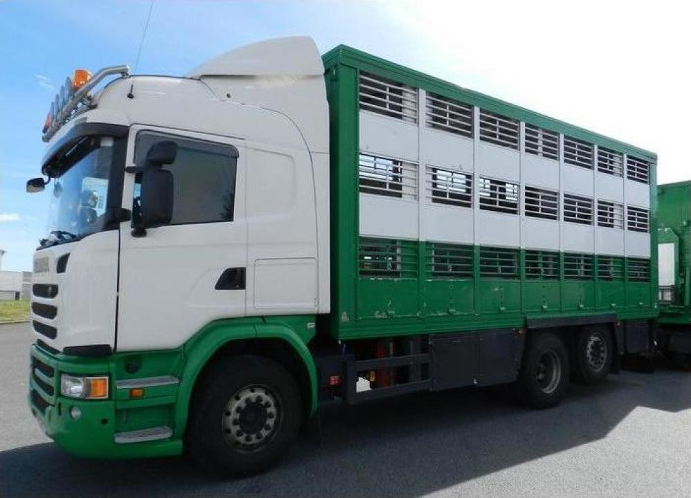 Camion transport animale Scania G490 06/2014 6x2
