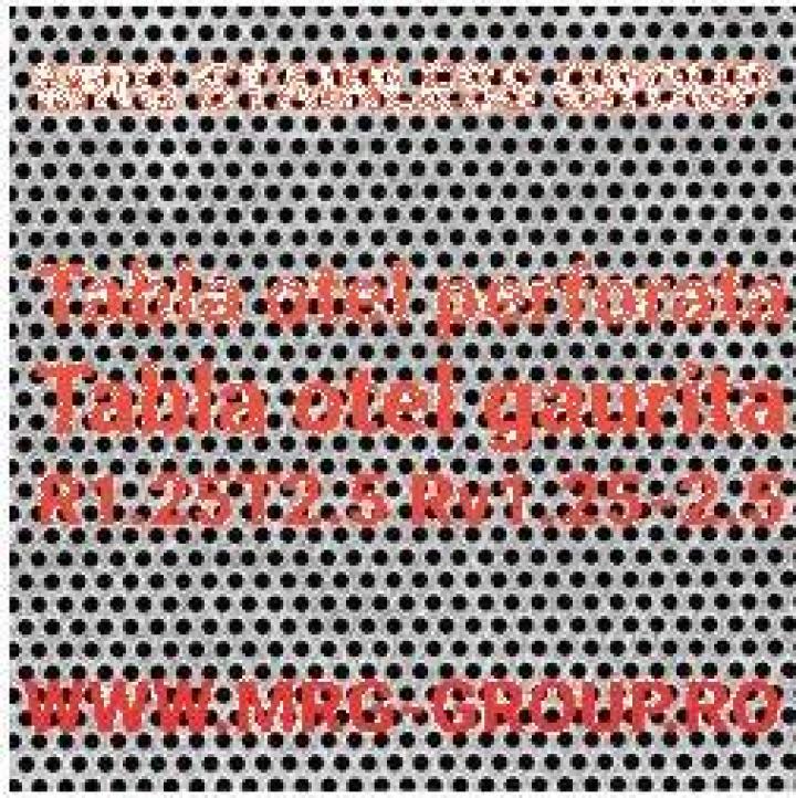 Tabla perforata otel 1x1000x2000 R1.25T2.5 sita gaurita Inox