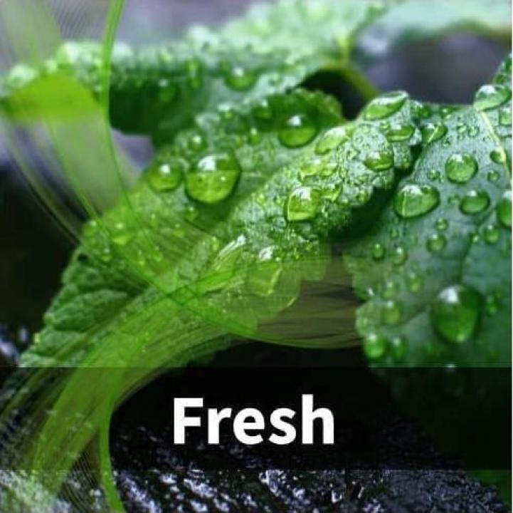 Odorizant cu aroma - Fresh