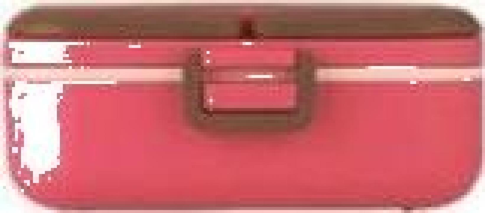 Cutie pereti thermo pentru mancare, 0.75 litri - roz